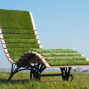 deck chair with royal grass