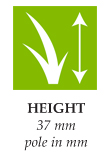 height-exclusive30