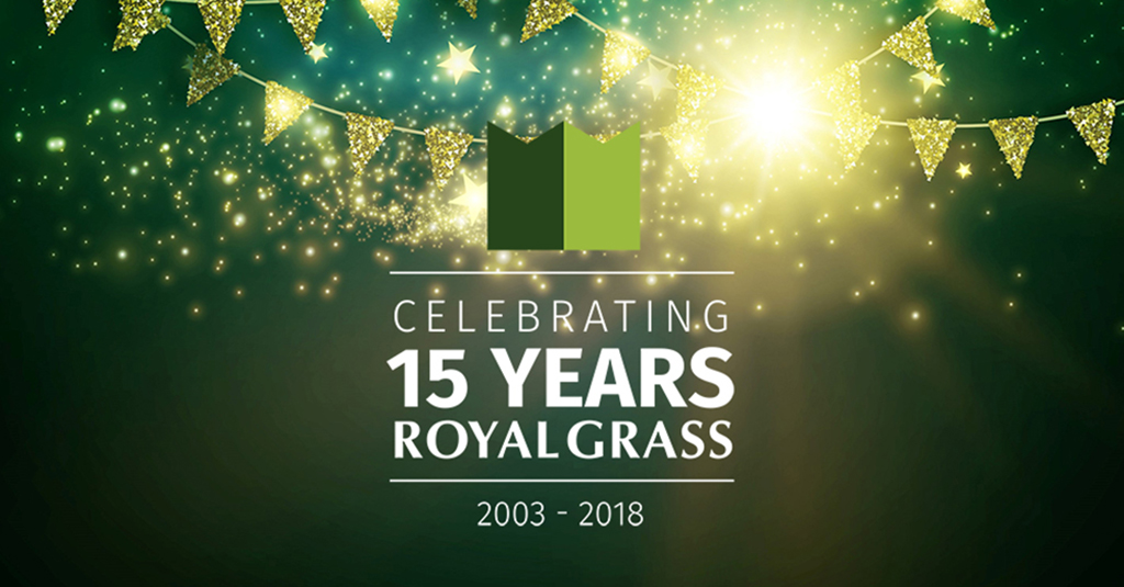15 years Royal Grass artificial grass