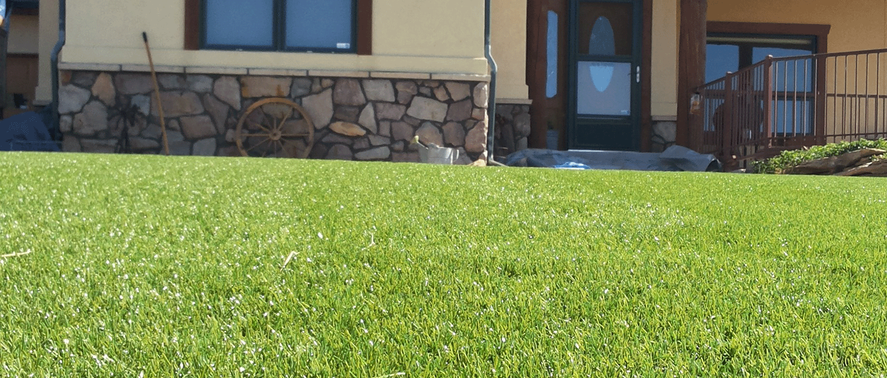 Artificial grass Fort Collins