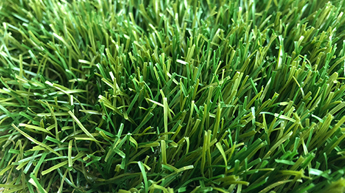 Royal Grass® Envy
