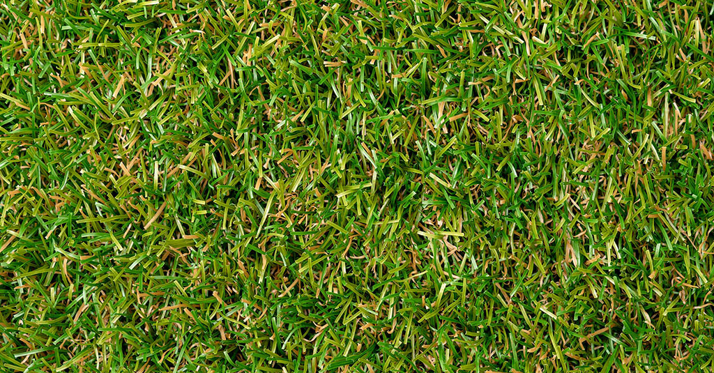 Royal Grass® Lush